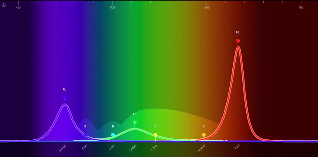Color Spectrum RGB