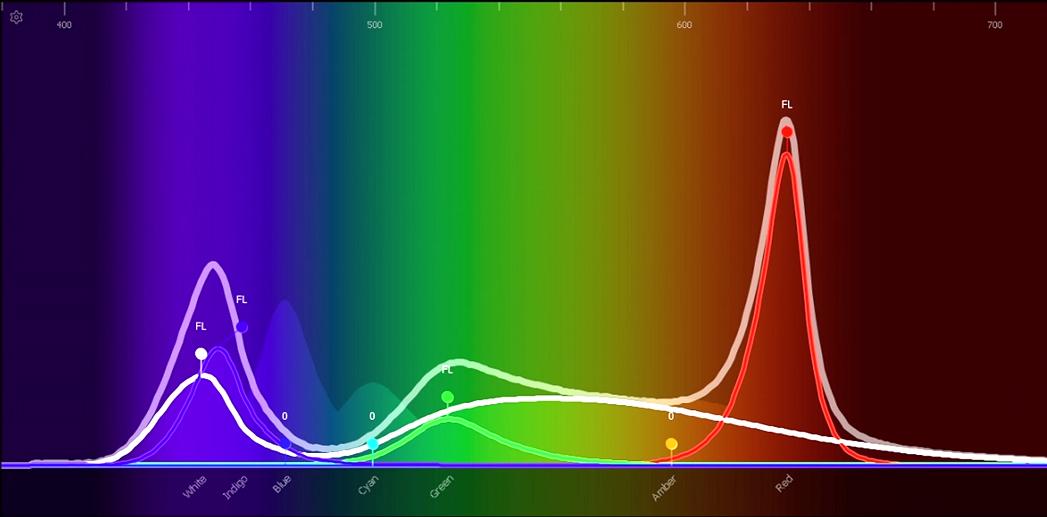 Color Spectrum RGBW