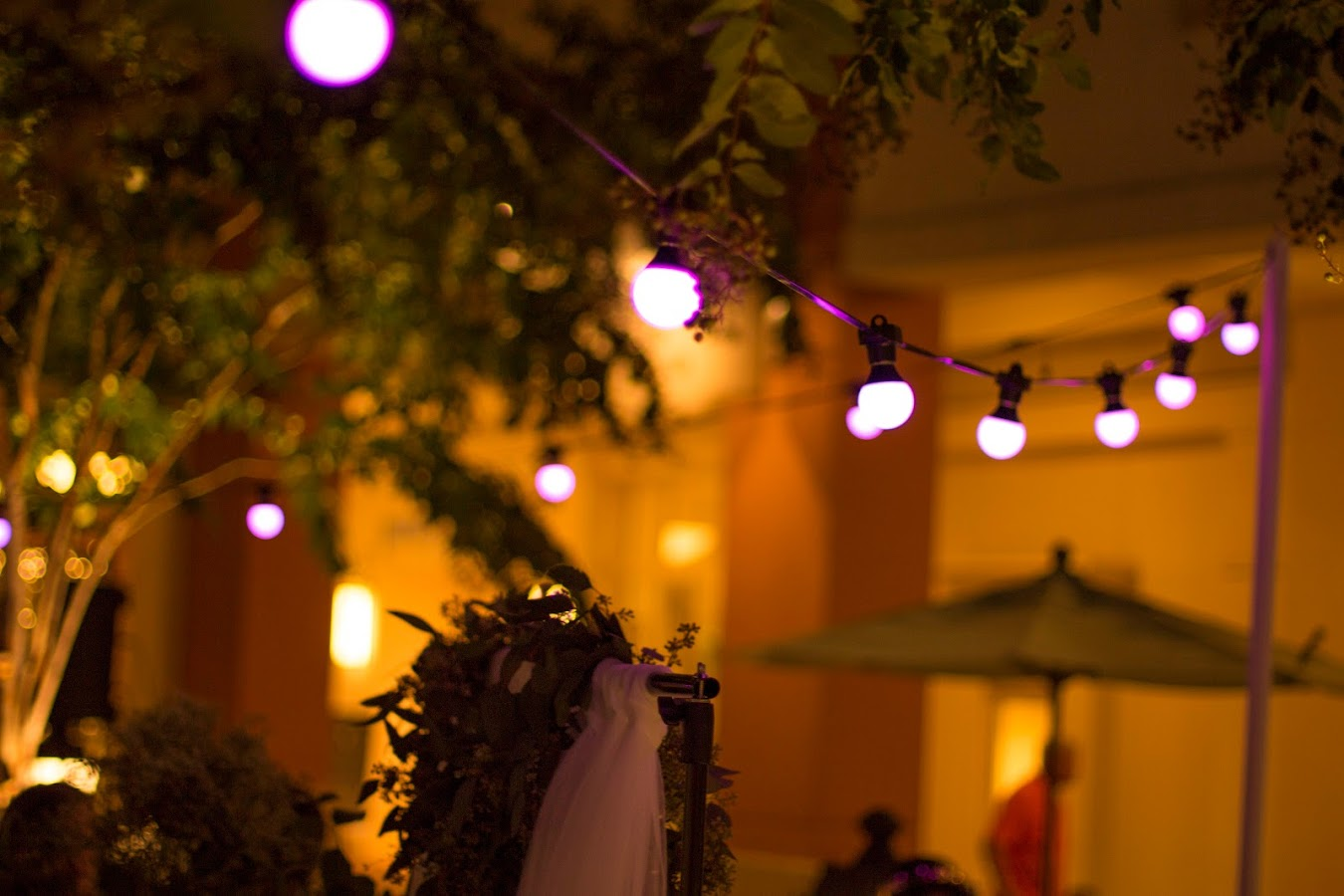 RGB LED Festoon bistro string lights pink